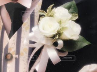 バラ,リボン,花婿,ブルー,新郎,ホワイト,ネイビー,ウェディング,スーツ