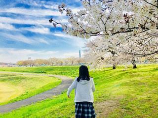 緑豊かな緑のフィールドに立っている人の写真・画像素材[1222927]