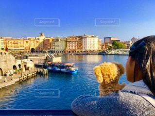 水の体の隣の港に座る人の写真・画像素材[1222938]