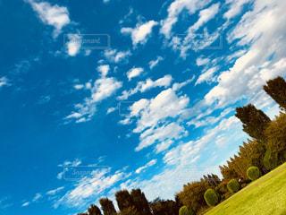 空,公園,紅葉,芝生,雲,青空,秋空,フォトジェニック,インスタ映え