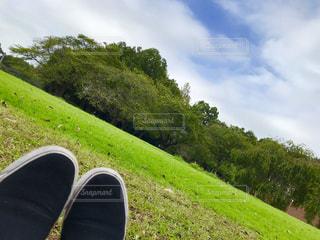 空,靴,屋外,青空,足,スニーカー,秋空