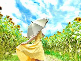 凧を持っている人の写真・画像素材[3508870]