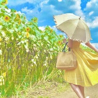 ピンクの傘を持った人の写真・画像素材[3670614]