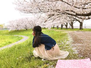 芝生で覆われた畑の上に座っている人の写真・画像素材[4293846]