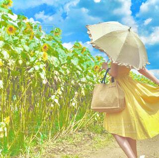 ピンクの傘を持った人の写真・画像素材[4301995]