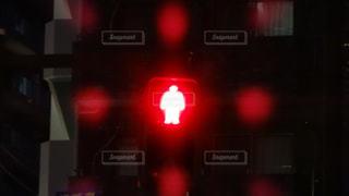 赤の写真・画像素材[538290]