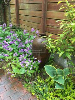 ガーデン 庭 ガーデニング アプローチ