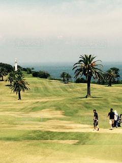 ゴルフ スポーツ 海 フェアウェイ リゾート