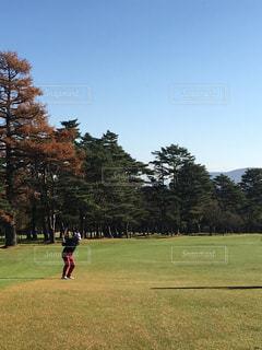 スポーツ ゴルフ
