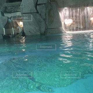 水のプールで泳いでいる人の写真・画像素材[708117]