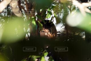 森の中の少女の写真・画像素材[1034942]