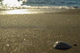 海辺の写真・画像素材[1035944]