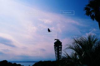 海の写真・画像素材[551770]