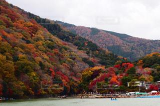 嵐山の紅葉の写真・画像素材[907094]
