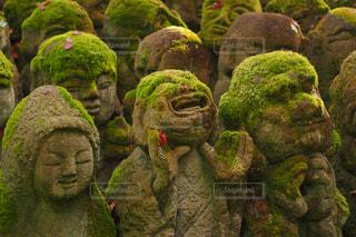 秋,紅葉,京都,観光,苔,寺,名所,喜び,愛宕念仏寺,羅漢像,千二百羅漢
