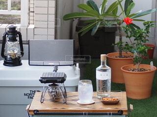 花,屋外,花瓶,テーブル,植木鉢,食器,観葉植物,草木,ベランピング