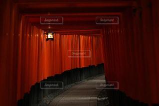 京都の写真・画像素材[528745]