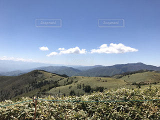 背景の山をフィールドに羊の群れの写真・画像素材[765957]