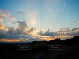 夕立の写真・画像素材[1449676]