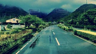 雨の写真・画像素材[567505]