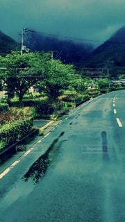 雨の写真・画像素材[567516]