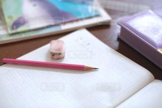 勉強の秋 算数の宿題をする小学生の写真・画像素材[2489515]