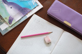 勉強の秋 算数の宿題をする小学生の写真・画像素材[2489517]