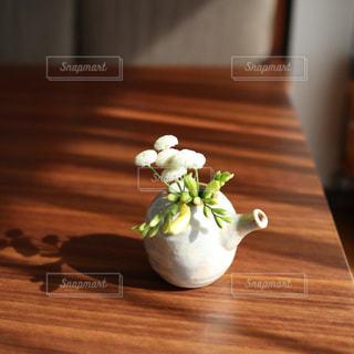 花の写真・画像素材[2149510]