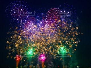夜空の花火の写真・画像素材[1428833]