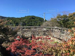 橋,紅葉,九州,福岡県,秋月
