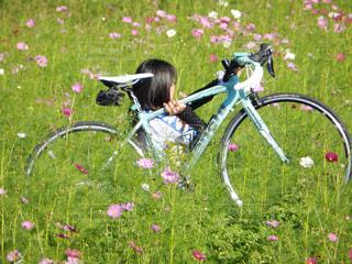 女性,花,自転車,スポーツ,運動,ロードバイク