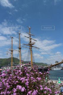帆船と花の写真・画像素材[1368501]