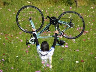 女性,花,秋,自転車,コスモス,秋桜,ロードバイク,福津市