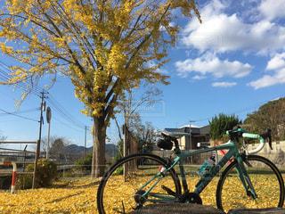 空,秋,自転車,雲,黄色,ロードバイク,秋空,福岡県