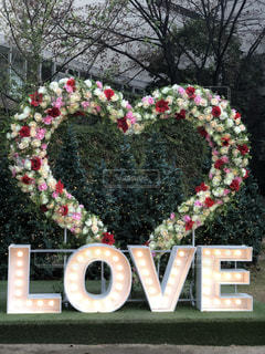花,LOVE,屋外,植物,ハート,可愛い,オブジェ