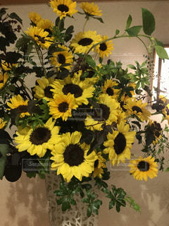 夏,ひまわり,黄色,向日葵,happy,明るい,ヒマワリ