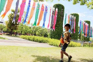 公園で凧の飛行男 - No.1167914