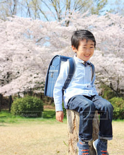草の中に立っている小さな男の子の写真・画像素材[1262257]