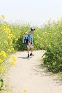 黄色い花を咲かせる男の写真・画像素材[2140715]