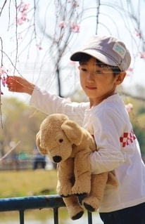 テディベアを持つ小さな女の子の写真・画像素材[2267235]