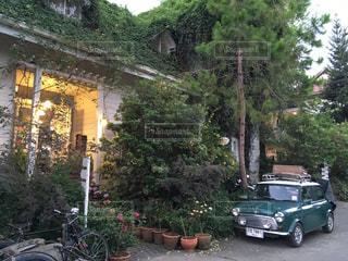 海外,車,光,オシャレ,おしゃれカフェ,森のカフェ,一軒家カフェ,リバーサイドカフェ