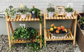 庭の木製ベンチの写真・画像素材[735030]