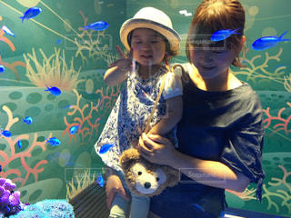 水族館の熱帯魚の写真・画像素材[732859]