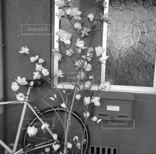 テーブルの上の花の花瓶 - No.973824