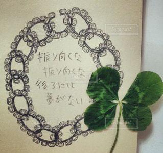 近くの花のアップ - No.973828