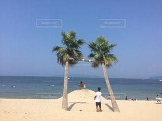 アウトドア,砂浜,休日