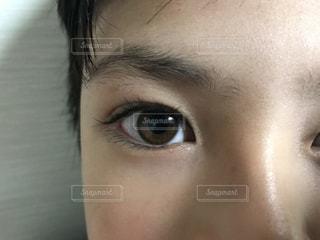 顔,男の子,目,ハーフ