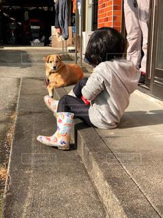 犬,風景,動物,庭,屋外,後ろ姿,家,人物,人,後姿,地面,姪っ子