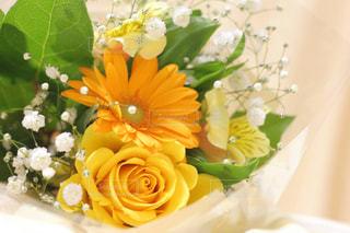 花の花束の写真・画像素材[1370987]