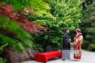 ツリーの前で赤いドレスの立っている男の写真・画像素材[1247227]